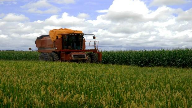 agricoltura 3