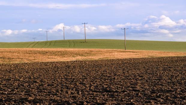 agricoltura 12