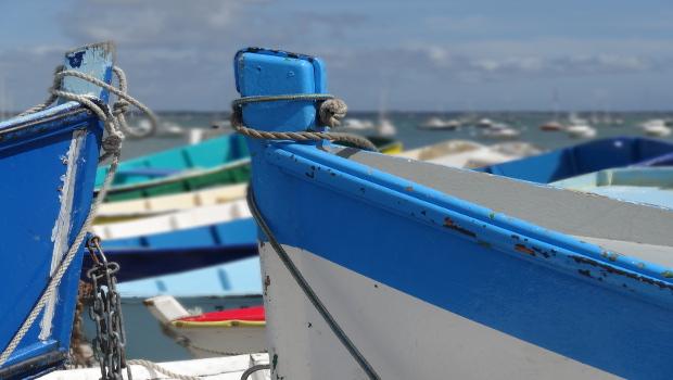 Noleggio imbarcazioni da diporto